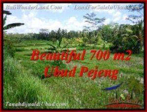 JUAL TANAH di UBUD 700 m2 View Sawah link villa
