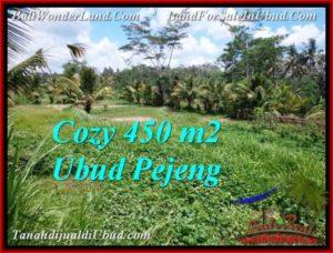 TANAH MURAH JUAL di UBUD BALI 4.5 Are View Sawah link villa