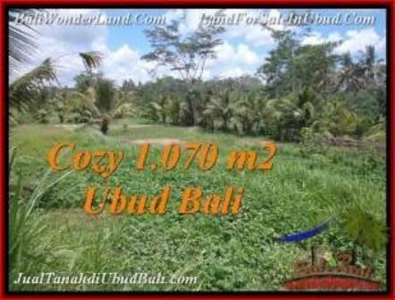 JUAL TANAH MURAH di UBUD 10.7 Are di Sentral Ubud