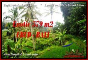 DIJUAL TANAH di UBUD BALI Untuk INVESTASI TJUB538