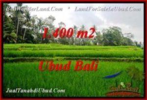 JUAL TANAH di UBUD BALI 14 Are View Sawah dan kebun