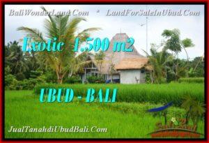 JUAL TANAH di UBUD 1,500 m2 View Sawah, link villa