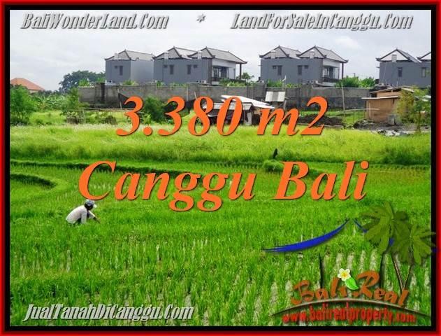 JUAL TANAH DI CANGGU BALI 3,380 m2  View sawah, lingkungan villa