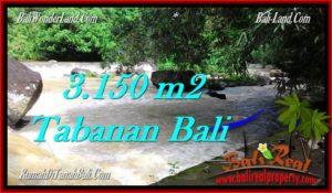 TANAH MURAH DIJUAL di TABANAN BALI 3,150 m2 di Tabanan Selemadeg