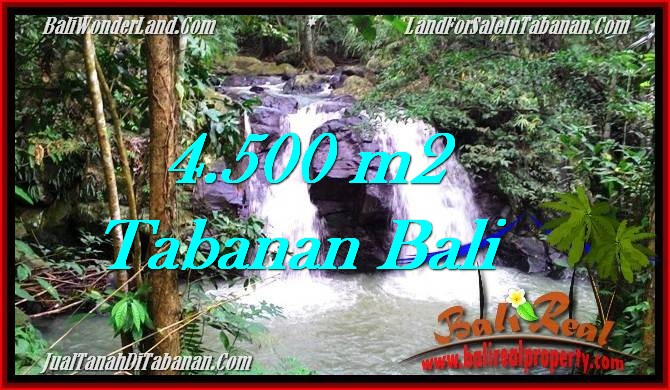JUAL TANAH MURAH di TABANAN 4,500 m2  View Sawah dan Sungai