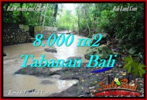 TANAH di TABANAN JUAL MURAH 8,000 m2 View kebun dan sungai
