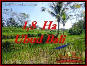 JUAL TANAH MURAH di UBUD 16,000 m2 di Ubud Payangan