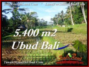 DIJUAL TANAH di UBUD 54 Are di Ubud Payangan