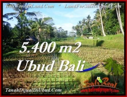 TANAH MURAH  di UBUD BALI DIJUAL 5,400 m2  View sawah dan sungai kecil