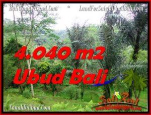 JUAL TANAH MURAH di UBUD 4,040 m2 View Sungai dan Hutan