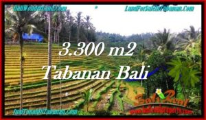JUAL TANAH di TABANAN BALI 33 Are di Tabanan Selemadeg