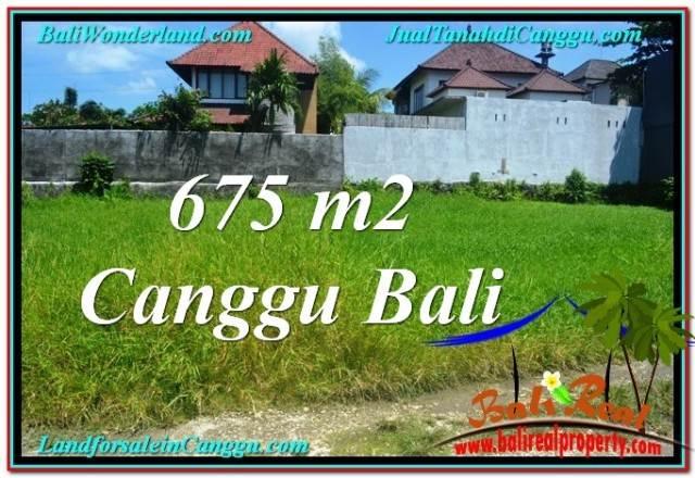 DIJUAL TANAH MURAH di CANGGU 6.75 Are di Canggu Brawa