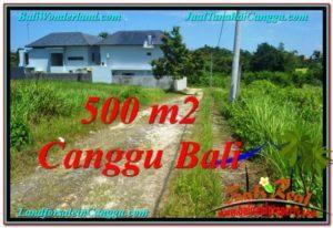 TANAH DIJUAL di CANGGU 500 m2 di Canggu Brawa