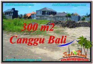 JUAL MURAH TANAH di CANGGU BALI TJCG203