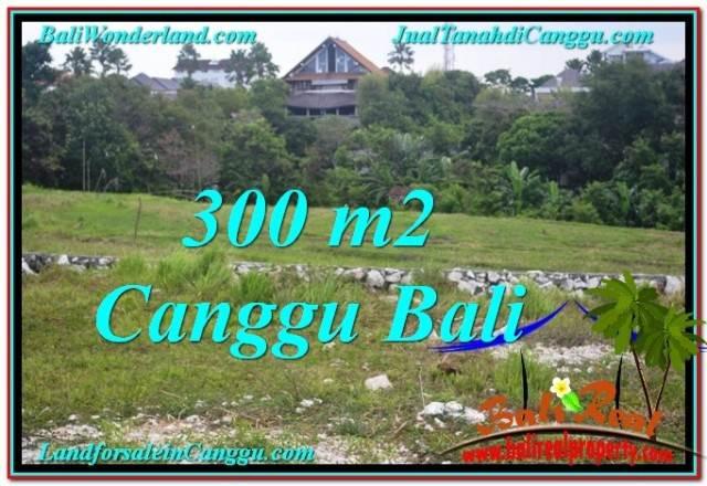 TANAH JUAL MURAH  CANGGU BALI 300 m2  View sawah lingkungan villa
