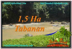 TANAH JUAL MURAH TABANAN 15,000 m2 View Sawah dan Sungai