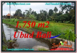 JUAL MURAH TANAH di UBUD BALI 7.15 Are View Sawah dan sungai