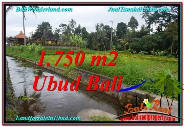 TANAH di UBUD BALI DIJUAL MURAH Untuk INVESTASI TJUB557