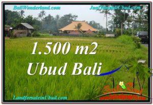 TANAH MURAH DIJUAL di UBUD BALI 15 Are di Ubud Tampak Siring