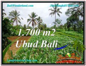 TANAH di UBUD BALI DIJUAL MURAH 1,700 m2 di Ubud Payangan