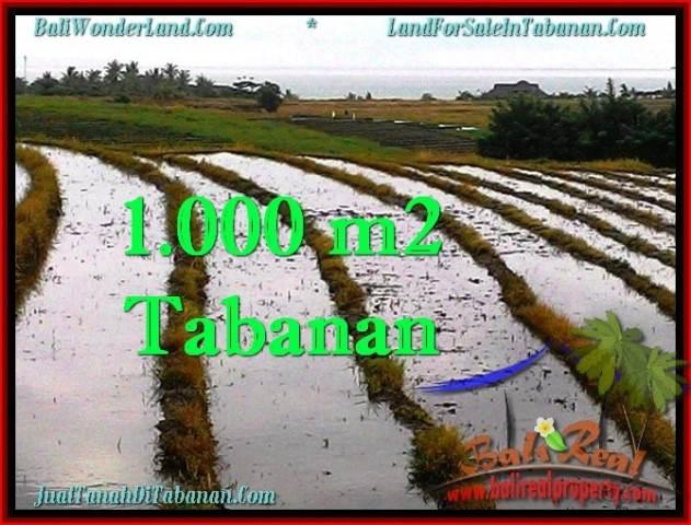 TANAH JUAL MURAH  TABANAN 1,000 m2  View sawah, gunung dan laut