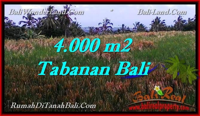 TANAH MURAH di TABANAN BALI Untuk INVESTASI TJTB288