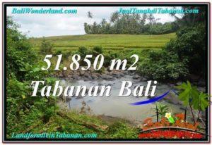 TANAH di TABANAN BALI DIJUAL MURAH 518.5 Are View Sawah dan Sungai