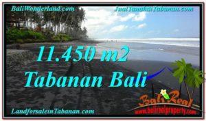 TANAH MURAH di TABANAN BALI 11,450 m2 di Tabanan Kerambitan
