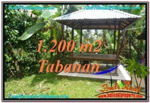 TANAH JUAL MURAH TABANAN 1,200 m2 View kebun dan sungai