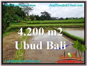 JUAL MURAH TANAH di UBUD BALI 42 Are View kebun dan sawah