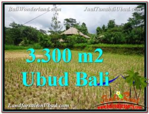 TANAH DIJUAL MURAH di UBUD BALI 3,300 m2 di Ubud Tampak Siring