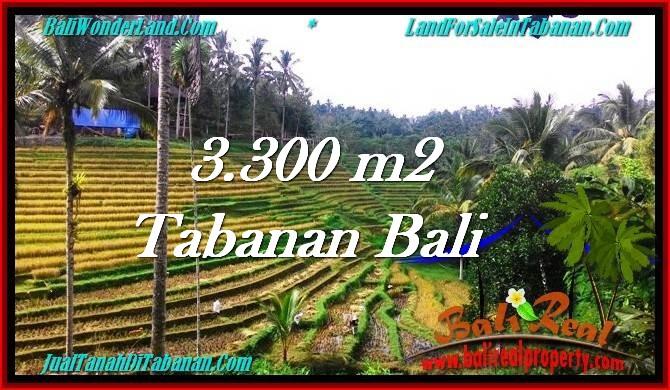 TANAH MURAH  di TABANAN BALI DIJUAL 33 Are View Sawah dan Kebun