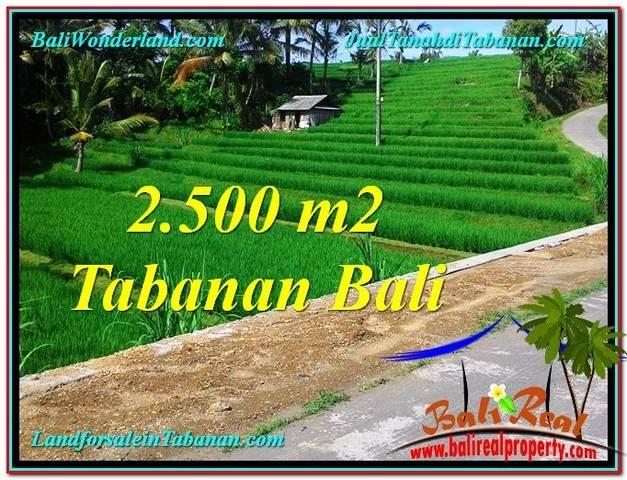 JUAL TANAH MURAH di TABANAN BALI 2,500 m2 di Tabanan Penebel