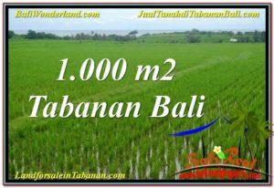 JUAL TANAH di TABANAN BALI 1,000 m2 View Laut, Gunung dan sawah