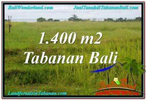 TANAH MURAH di TABANAN DIJUAL 1,400 m2 di Tabanan Selemadeg