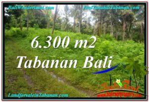 JUAL TANAH di TABANAN 63 Are View kebun