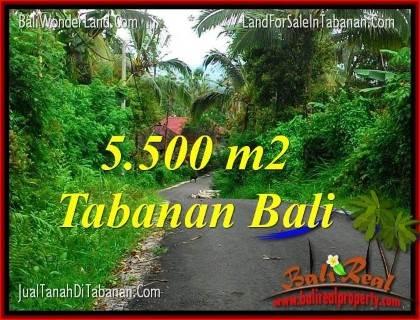 TANAH MURAH di TABANAN BALI DIJUAL Untuk INVESTASI TJTB323