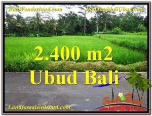 JUAL TANAH MURAH di UBUD 2,800 m2 di Ubud Tampak Siring