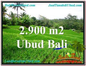 JUAL TANAH di UBUD BALI 2,900 m2 View sawah