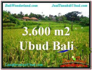 TANAH di UBUD BALI DIJUAL MURAH 36 Are View sawah link Villa dan Restorant