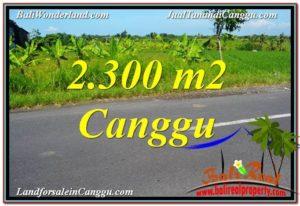 TANAH MURAH di CANGGU Untuk INVESTASI TJCG209