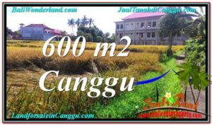 TANAH DIJUAL di CANGGU BALI Untuk INVESTASI TJCG211