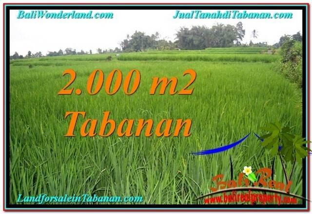 JUAL TANAH di TABANAN 2,000 m2 View Sawah