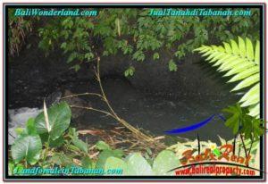 TANAH DIJUAL MURAH di TABANAN 2,000 m2 di Tabanan Penebel