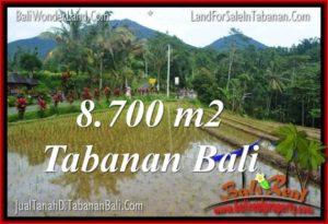 TANAH MURAH JUAL di TABANAN BALI 8,700 m2 View gunung dan sawah