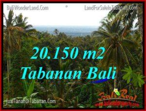 JUAL TANAH di TABANAN BALI 20,150 m2 View Laut dan Gunung