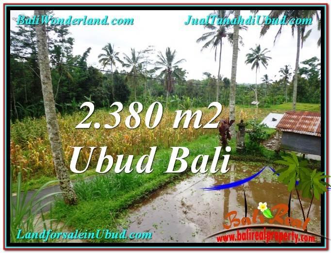 JUAL MURAH TANAH di UBUD BALI 23.8 Are View kebun dan sawah