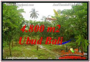 TANAH di UBUD JUAL MURAH 4,800 m2 View Kebun dan Pangkung