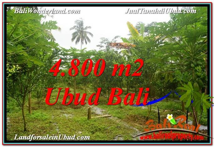 DIJUAL TANAH di UBUD 4,800 m2 di Ubud Payangan