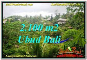 TANAH di UBUD DIJUAL 2,100 m2 di Ubud Payangan